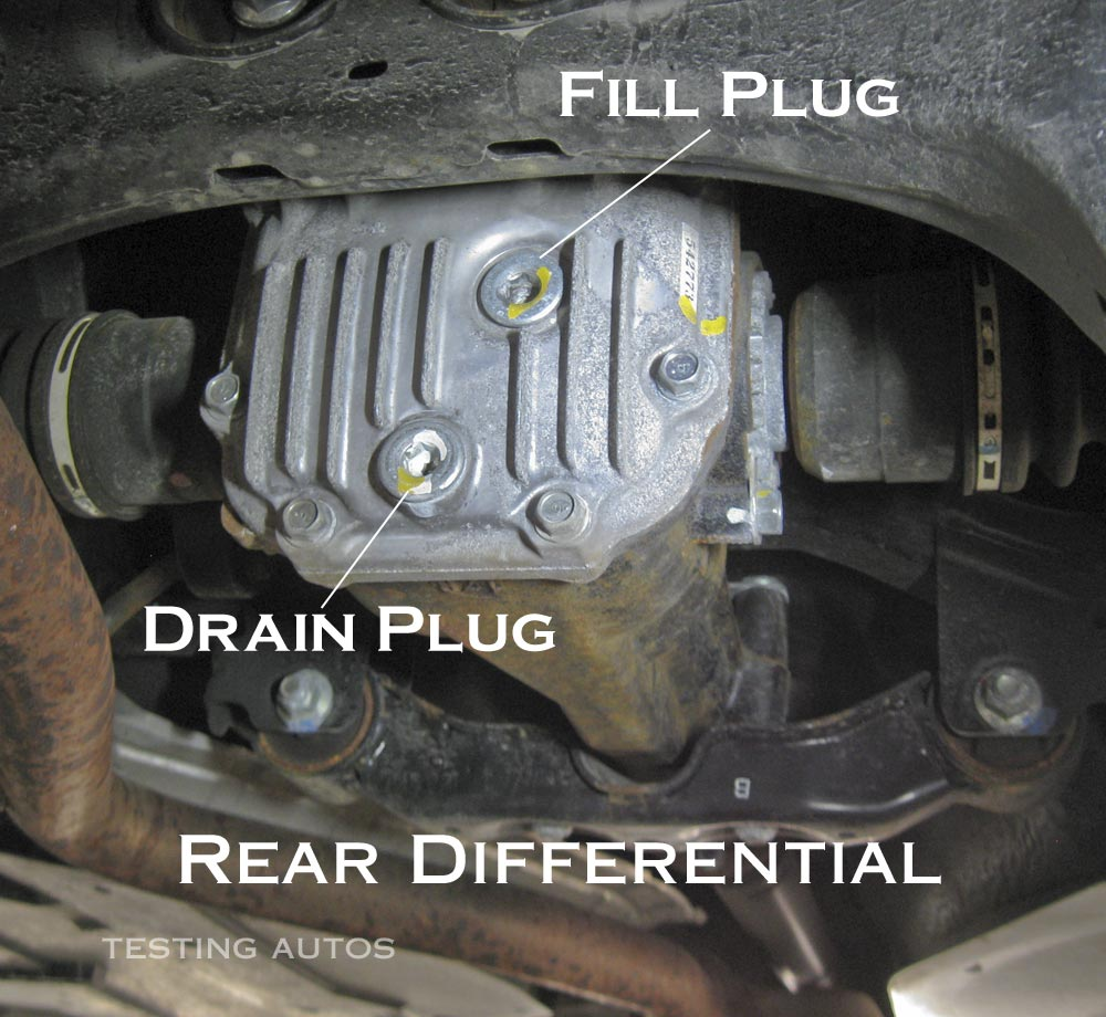 Rear differential gear oil